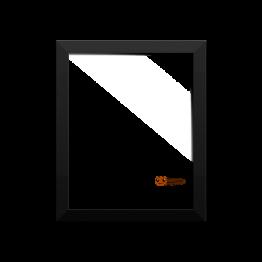 Bug's Life Framed photo paper poster